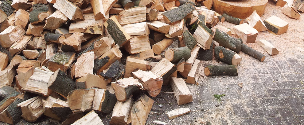 Top Quality Firewood
