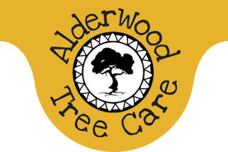 Alderwood Tree Care